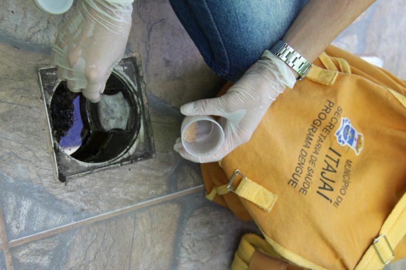 Controle de endemias já registrou 35 focos de Aedes aegypti só em 2021. – Foto: Prefeitura de Itajaí/Divulgação