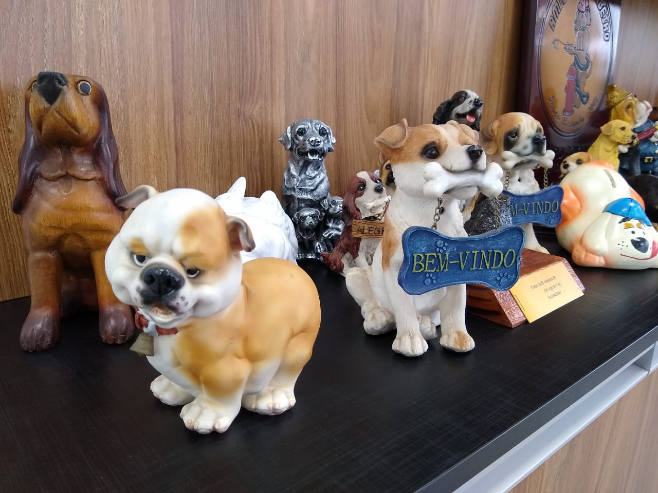 Na coleção de Walter Parizotto, que passam de 300 objetos, tem mini cães de todo tipo de material, desde porcelana até plástico - Carolina Debiasi/ND