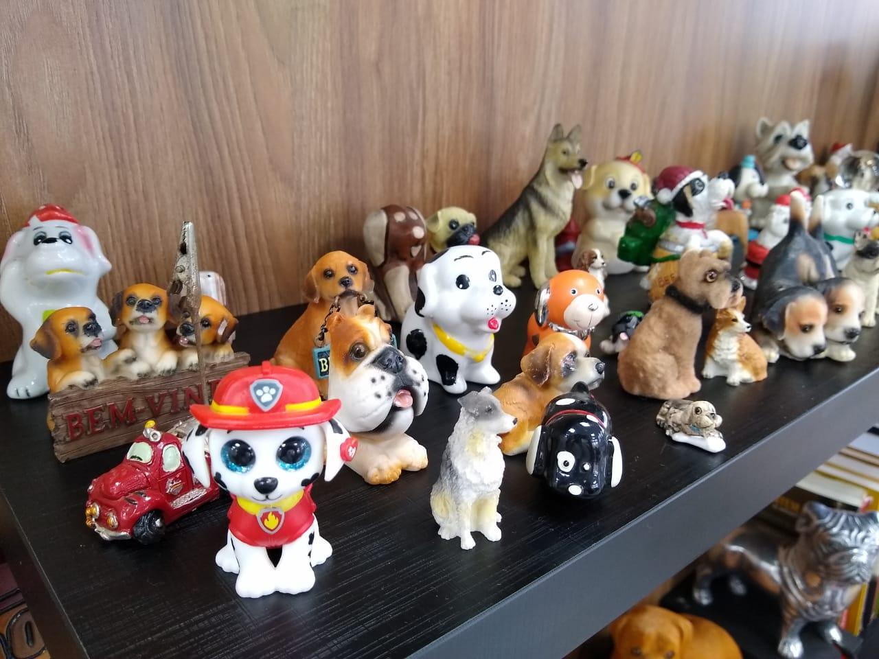 A coleção iniciou em 2006 e, até hoje, Parizotto é presenteada com mini cachorros - Carolina Debiasi/ND