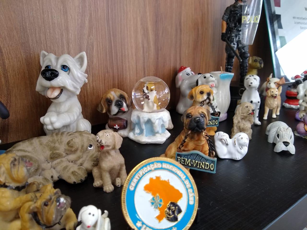 Muitos cachorros estão expostos nas prateleiras, porém em sua casa também tem um espaço especial para deixar a mostra sua coleção - Carolina Debiasi/ND
