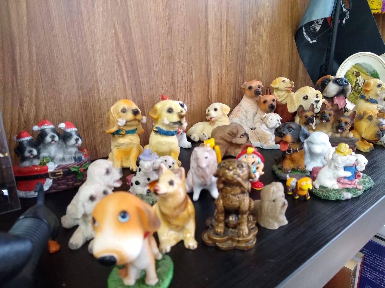 Na coleção de Parizotto tem miniaturas do leste europeu, da América Latina e também dos Estados Unidos - Carolina Debiasi/ND
