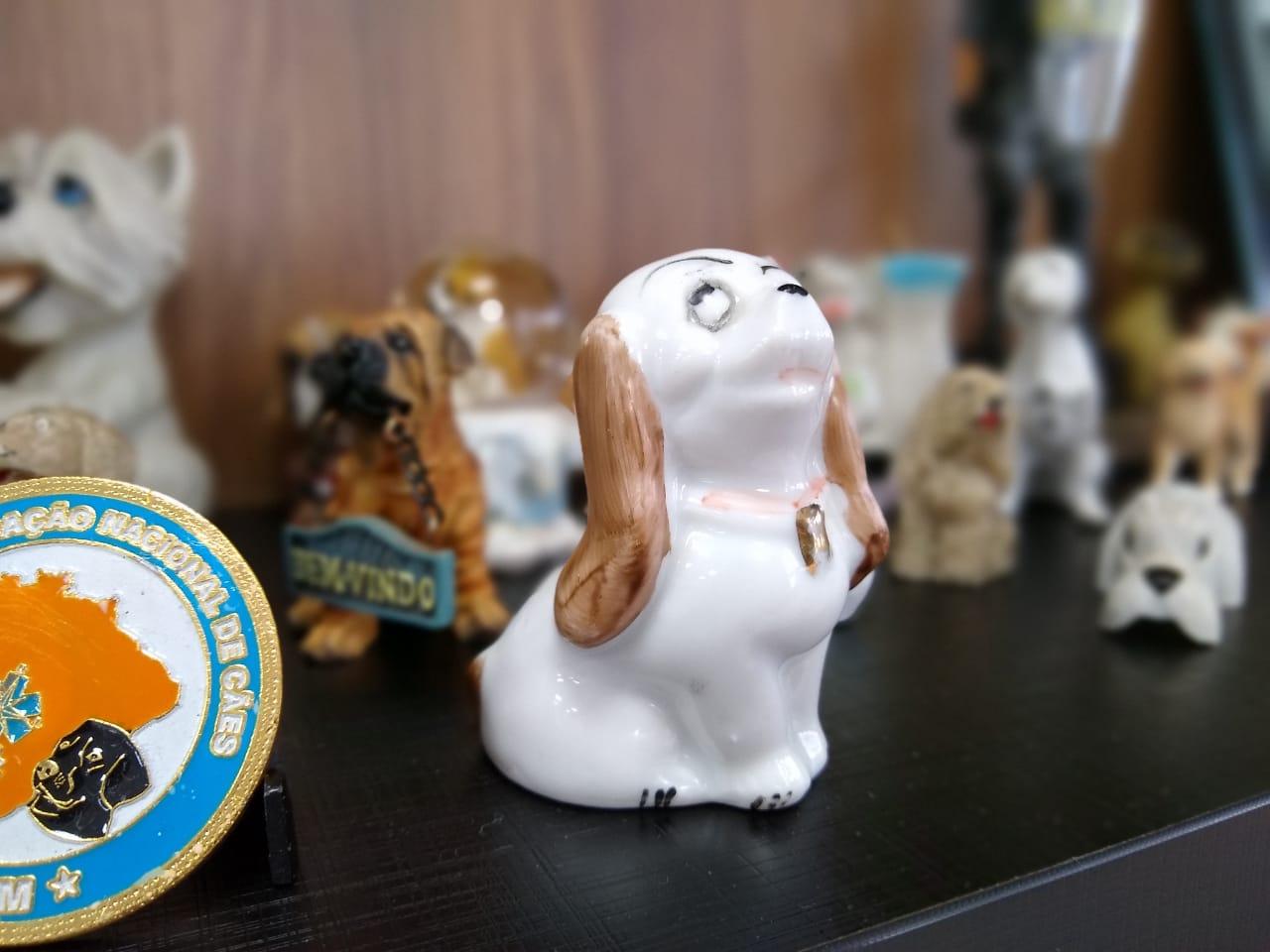 A miniatura de porcelana tem 60 anos e pertencia mãe de Parizotto - Carolina Debiasi/ND