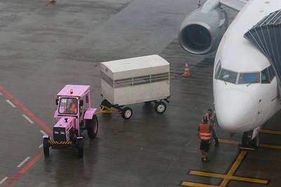 Remoção das caixas com vacinas, do avião que transportou as doses para SC; nesta segunda remessa, o Estado recebeu 47,5 unidades – Foto: Julio Cavalheiro/SECOM