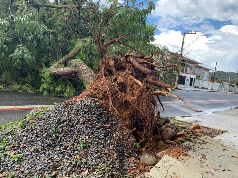Extra: A região de Joinville também registrou um forte temporal no início da tarde desta segunda-feira (15) – Foto: Alphonsus Stofelli/NDTV