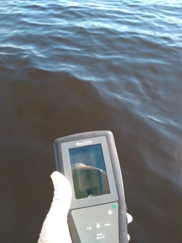 Resultado de um monitoramento do Lafic. Foto: Divulgação/Lafic/ND