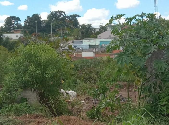 Homem foi picado por todo o corpo na sexta-feira (19) – Foto: Bombeiros Militares/Divulgação