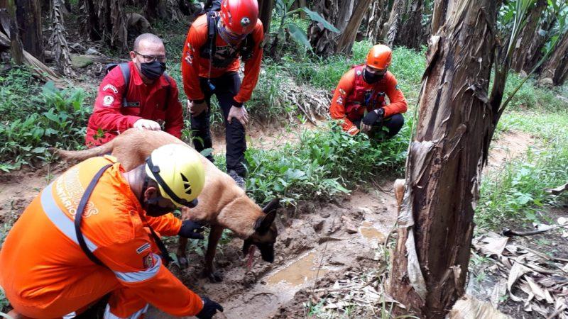 Buscas foram realizadas em local onde ela teria sido vista – Foto: Divulgação/ND