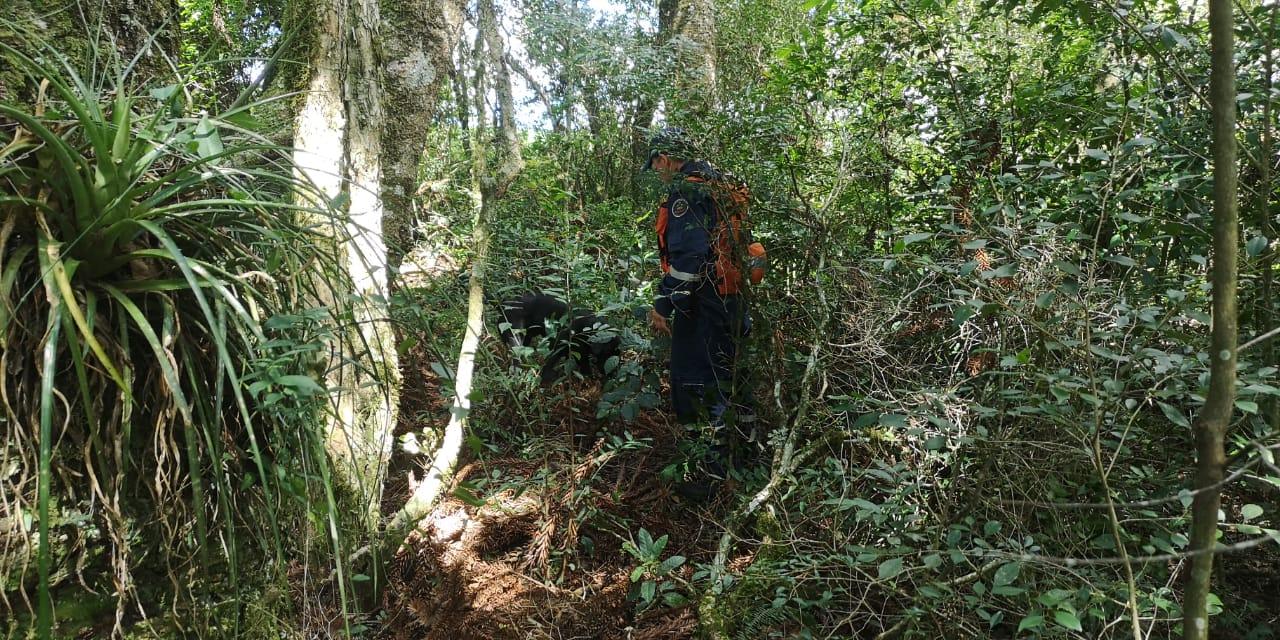 Dois binômios do Corpo de Bombeiros contribuíram com as buscas. - Corpo de Bombeiros/Divulgação/ND