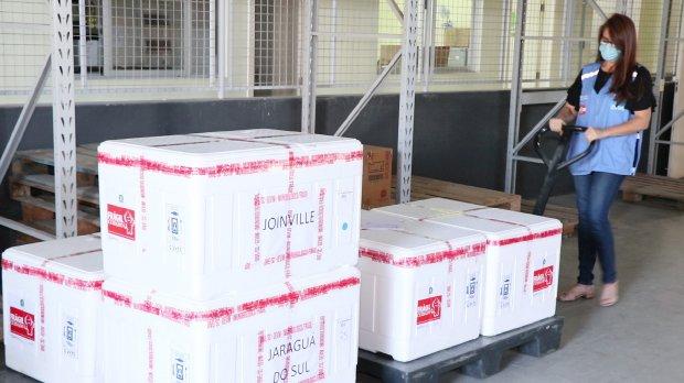 Distribuição de mais 42,5 mil doses da CoronaVac – Foto: Doia Cercal/Secom/ND
