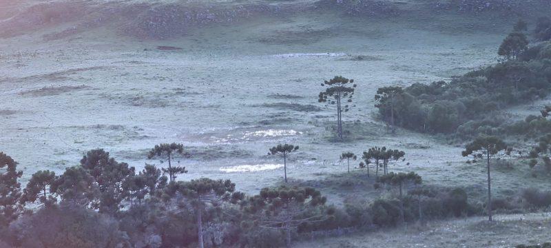 A Epagri/Ciram registrou neste domingo a mínima de 2,9°C em Urupema – Foto: Mycchel Legnaghi/ São Joaquim Online