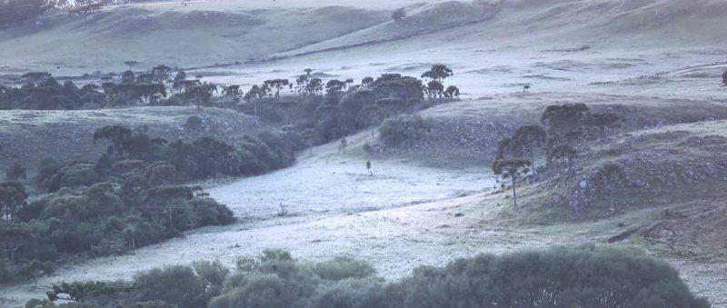 O Vale dos Caminhos da Neve fica a cerca de 3 km ao Sul de São Joaquim, na Serra catarinense – Foto: Mycchel Legnaghi /São Joaquim Online