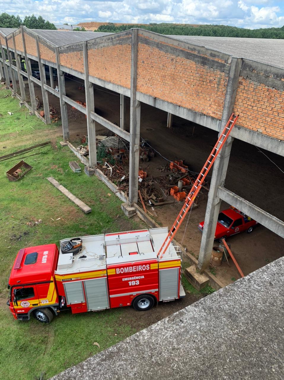 Gato é resgatado em telhado de galpão com mais de 15 metros de altura - Divulgação/OBM