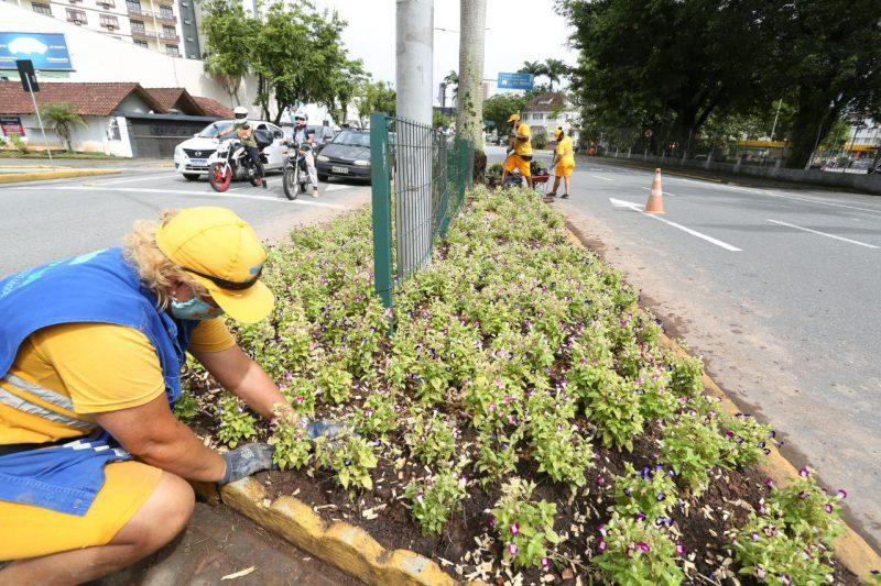 Inscrições podem ser feitas no site da Prefeitura de Joinville – Foto: Prefeitura de Joinville/Divulgação/ND