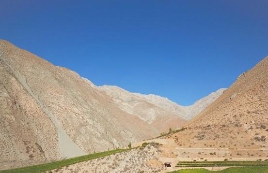Viñedos Alcohuaz, do Vale de Elqui no Chile, projeto do Enólogo Marcelo Retamal que produz apenas vinhos naturais – Foto: Divulgação
