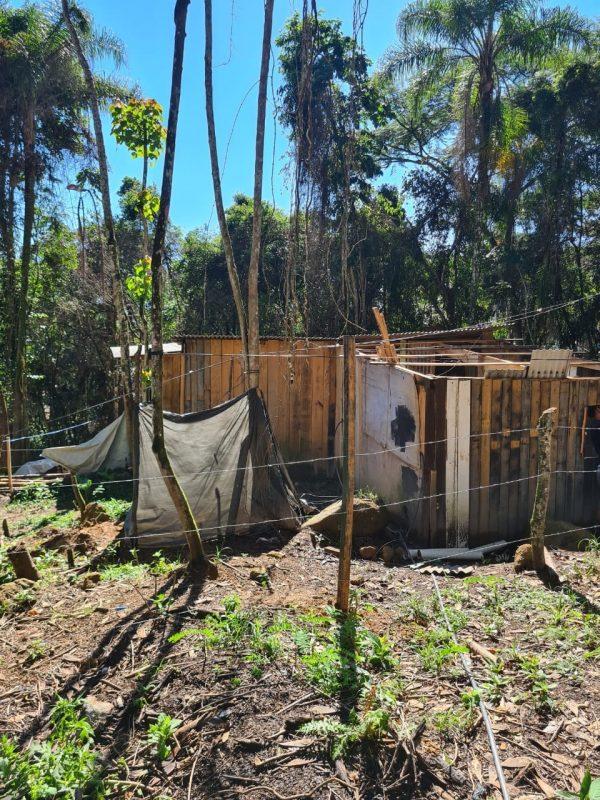 Celesc também identificou o furto de energia elétrica – Foto: PMSJ/Divulgação/ND