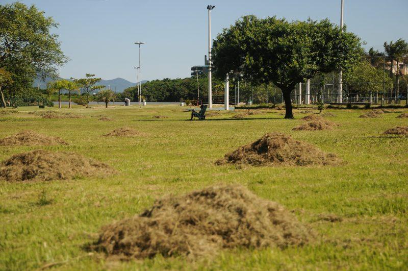 Já na tarde desta quinta-feira (18), a situação mudou. Com a grama cortada e bancos e placas restauradas, o parque voltou a proporcionar a sensação de bem-estar para os visitantes – Foto: Leo Munhoz/ND
