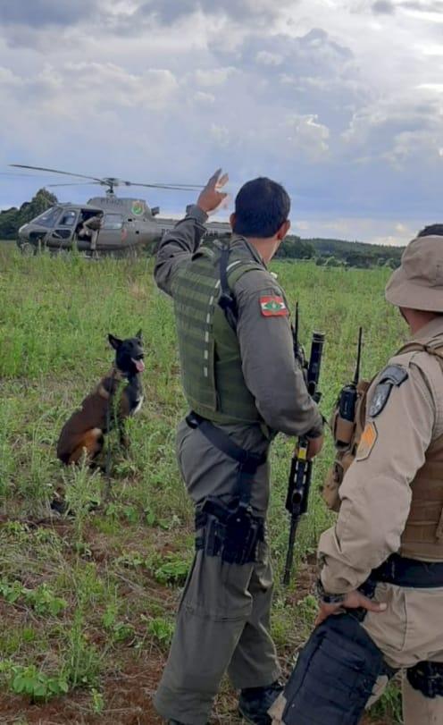 Helicóptero e canil da PM de Lages auxiliaram nas buscas. - Polícia Militar/Divulgação/ND