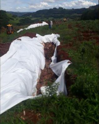 Uma vala foi aberta em meio a plantação para que os porcos fossem enterrados da maneira correta, conforme orientação do IMA - Reprodução/Divulgação/ND