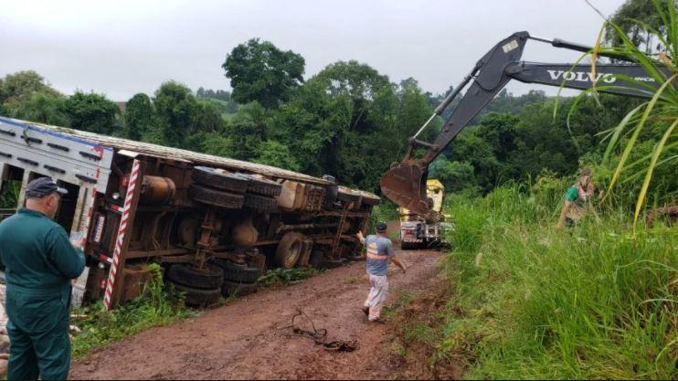 Caminhão tombou em um curva e todos os porcos morreram - Jornei de Souza/Portal Peperi/Divulgação/ND
