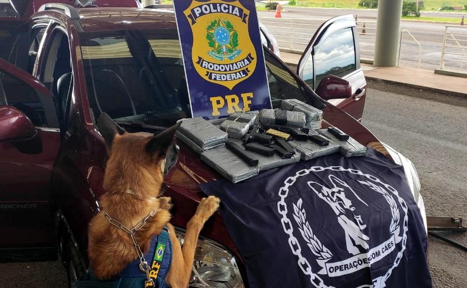 Droga foi localizada pelo cão farejador da PRF, Billi. - PRF/Divulgação/ND