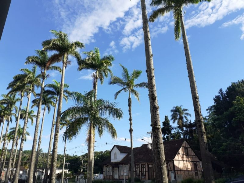 Sol e calor seguem predominando em Blumenau nesta quinta-feira (18) – Foto: Ketlin Ciquelero/Divulgação/ND