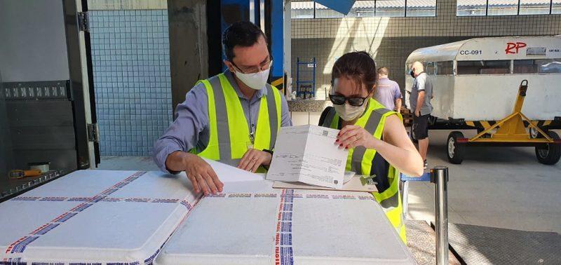 Doses começam a ser distribuídas aos municípios nesta segunda – Foto: Divulgação/Ministério da Saúde