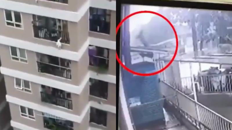 Homem salva criança de 2 anos que caiu do 12º andar de prédio– Foto: Reprodução/Twitter/ND