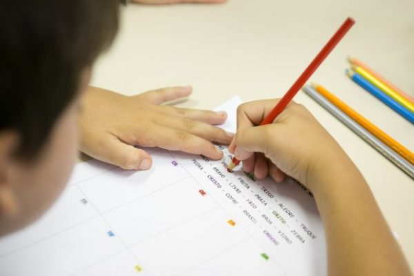 Prefeitura de Criciúma abriu inscrições de concurso público para professores e serventes- Foto: FCEE/Divulgação/ND