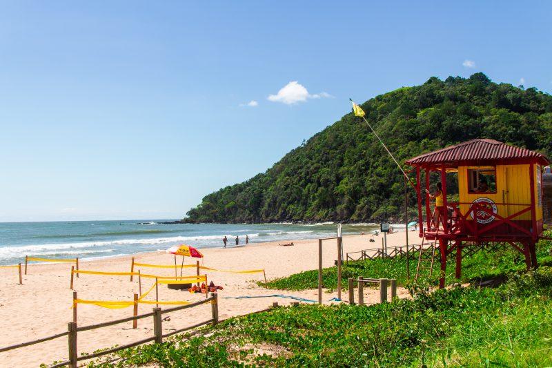 Praia Brava, em Itajaí. – Foto: Bruno Golembiewski/ND
