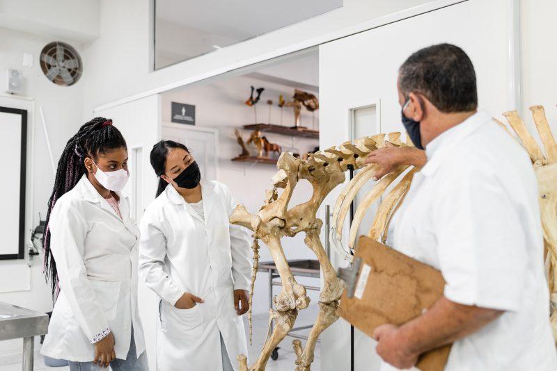 Aulas no laboratório seguindo todos os protocolos contra a COVID-19 – Foto: Divulgação