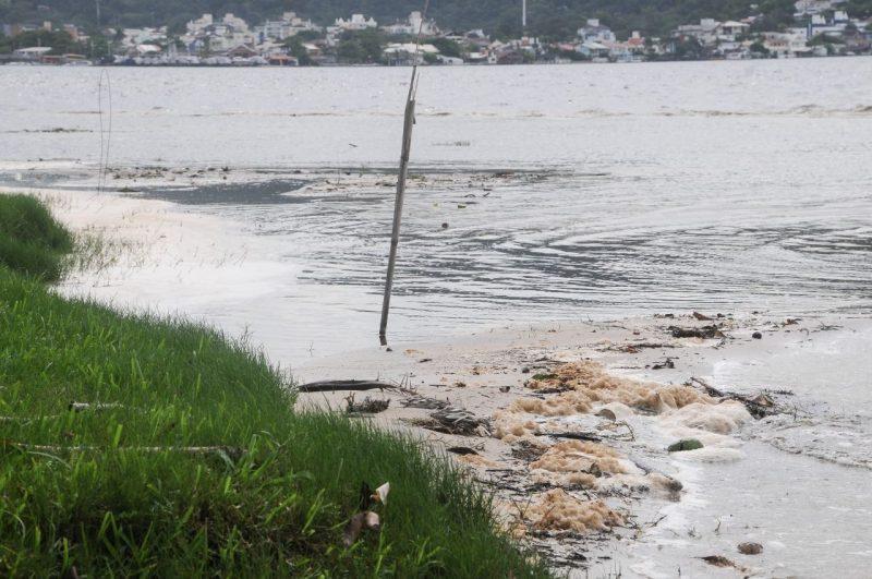 Lagoa da Conceição enfrenta a maré marrom – Foto: Leo Munhoz/ND