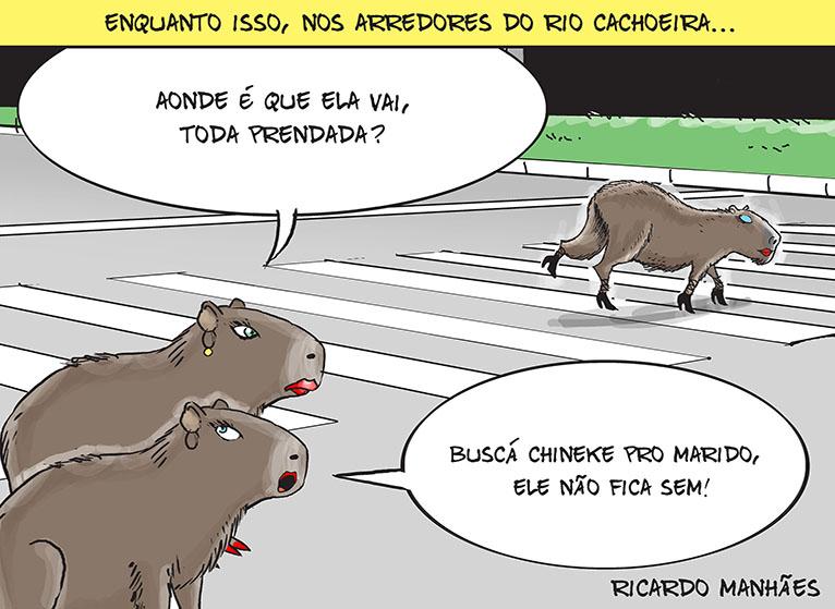 Se falou em Joinville, falou em chineque! – Foto: Arte/Ricardo Manhães