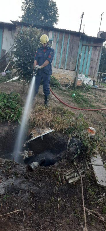 Bombeiros tiveram que encher a fossa pra conseguir retirar o animal – Foto: 9BBM/Divulgação
