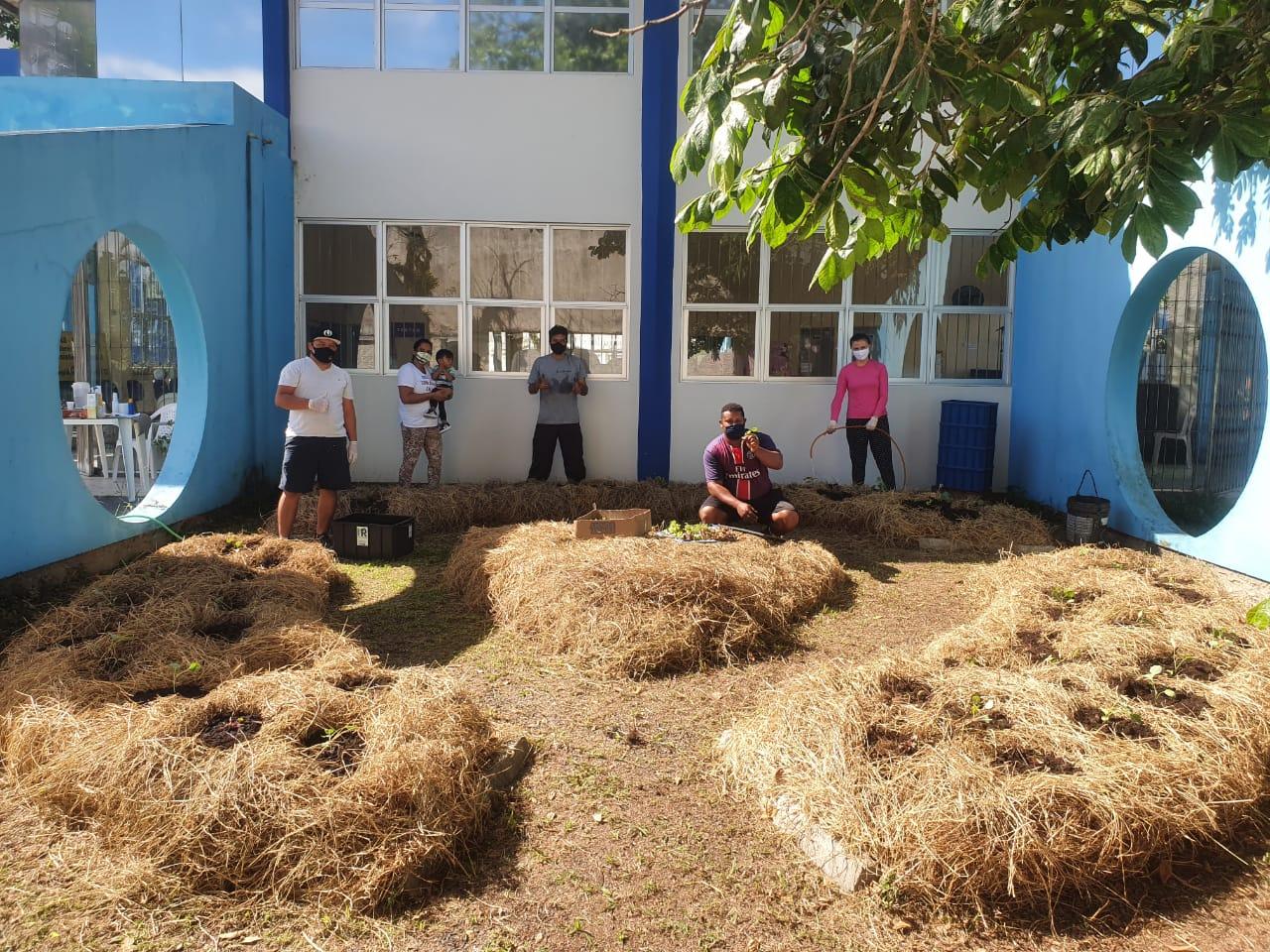 Cras de Florianópolis mantém horta comunitária desenvolvida em parceria com a Cepagro e Superintendência de Gestão de Resíduos da Secretaria Municipal do Meio Ambiente - Divulgação/PMF