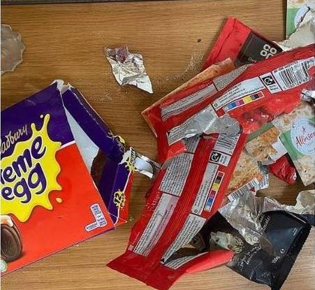 """Ela supõe que a porta do cômodo deve ter sido deixada entreaberta, então, o cachorro farejou e devorou os doces. """"Ele não parecia triste ou incomodado, ao contrário, estava empolgado. Mas isso devia ser por causa de todo o açúcar que ingeriu. Quando percebi a quantidade de chocolate que ele comeu, soube que precisava procurar ajuda"""", lembra. """"Eu estava mais preocupada com [a ingestão] do chocolate amargo que dos ovos, pois sabia dos perigos"""", acrescenta – Foto: Reprodução/Daily Mail"""