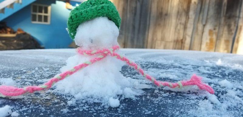 Frio em São Joaquim proporcionou aos catarinenses a volta dos bonecos de neve bizarros nesta quarta-feira (28) – Foto: Wagner Urbano/NotiserraSC