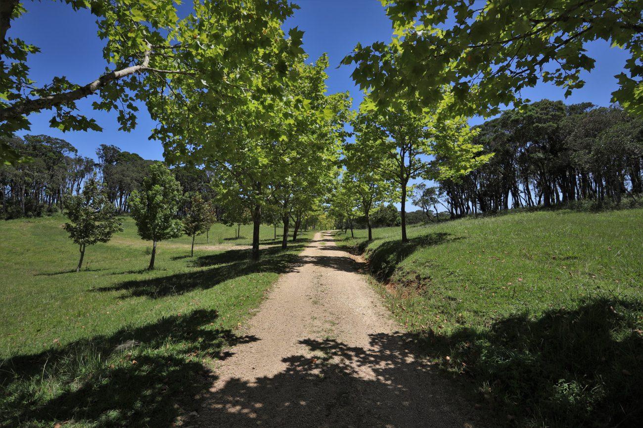 Na Fazenda Terramilia você pode desfrutar de caminhadas ou aproveitar a infraestrutura de lazer - Diagram Arch - @diagramarchfilm