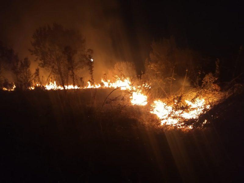 Incêndio destruiu parte da vegetação no fim da tarde desta segunda-feira (26) – Foto: Corpo de Bombeiros Militar/Divulgação