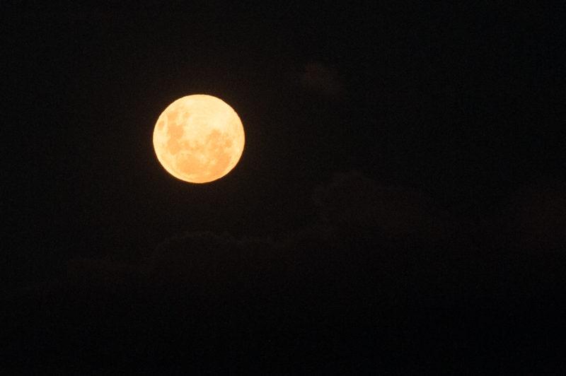 Lua de Morango ocorre nesta quinta-feira (24) – Foto: Leo Munhoz/ND