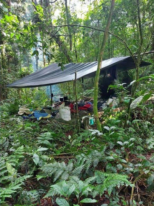 Polícia Militar desmonta acampamento que era usado para furto de palmito no Vale do Itajaí – Foto: Divulgação/Polícia Militar