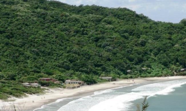 Praia dos Naufragados, em Florianópolis – Foto: Divulgação/ND