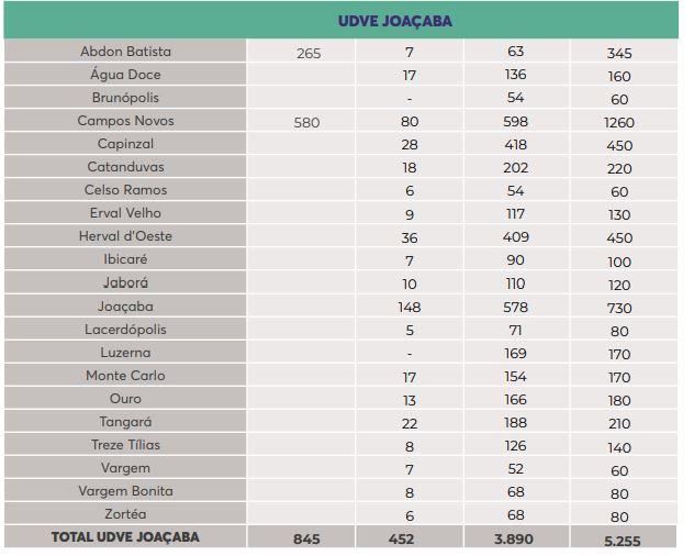 UDVE Joaçaba - Dive/SC/Reprodução/ND