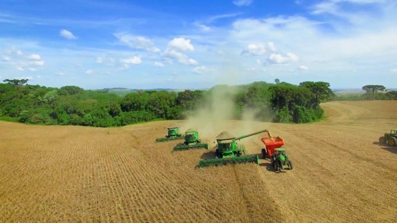 Do campo à indústria: Planalto Norte tem economia forte em várias atividades – Foto: Reprodução/NDTV