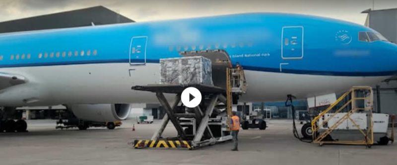 Avião pousou em Guarulhos (SP) no início desta manhã – Foto: Record TV/Reprodução