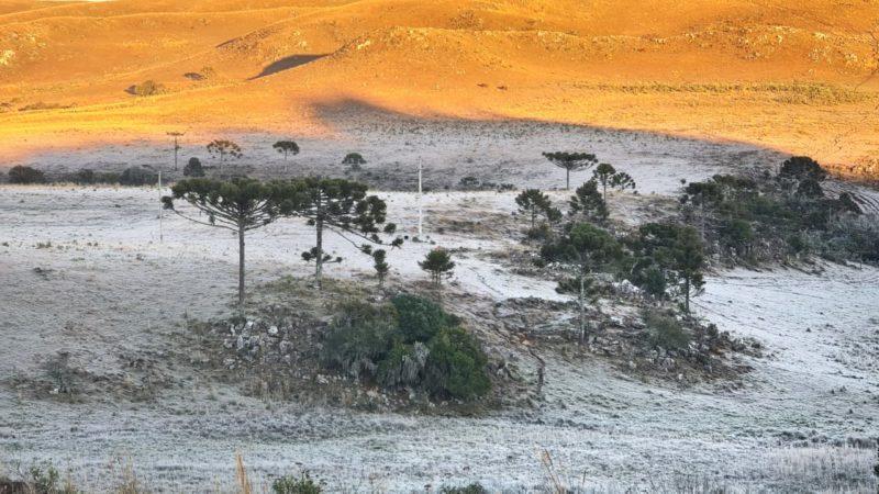 Temperaturas baixas tem sido frequentes ao amanhecer – Foto: Mycchel Legnaghi / São Joaquim Online