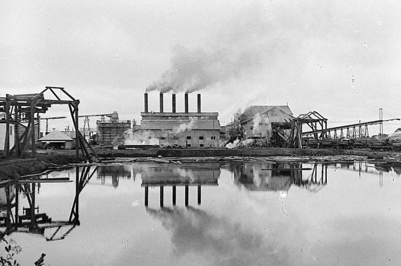 Estrada de ferro foi construída para escoar a produção da madeireira Lumber – Foto: Claro Jansson/Acervo Dorothy Jansson Moretti