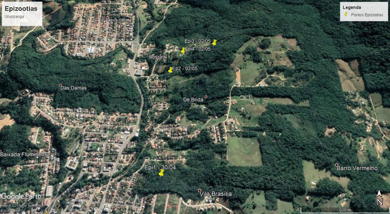Quatro macacos mortos foram encontrados em Urussanga - Divulgação/Prefeitura de Urussanga