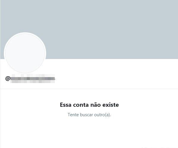 Perfil foi excluído das redes sociais – Foto: Reprodução/Twitter