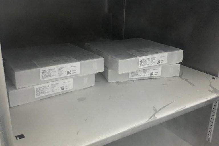 Vacinas da Pfizer chegam a Blumenau e seguem para armazenamento especial em ultrafreezer – Foto: Divulgação/Prefeitura de Blumenau