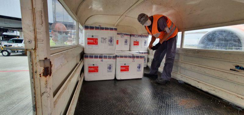 Doses chegaram na manhã deste sábado (1º) ao Estado – Foto: Núcleo de Comunicação da DIVE/SC